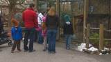 Zoo Boise hosts 'Wild at Heart' event