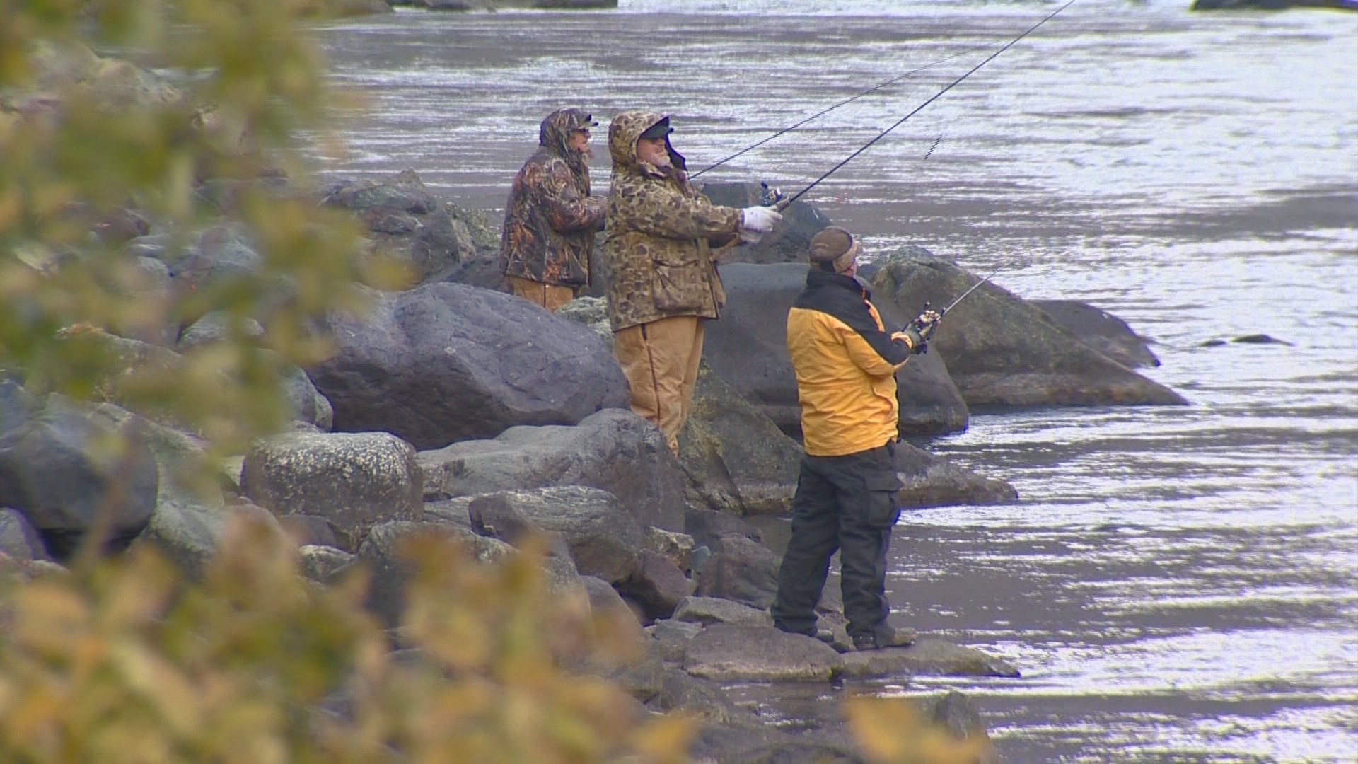 Possible increases for fish and game licenses ktvb com for Fish and game licence