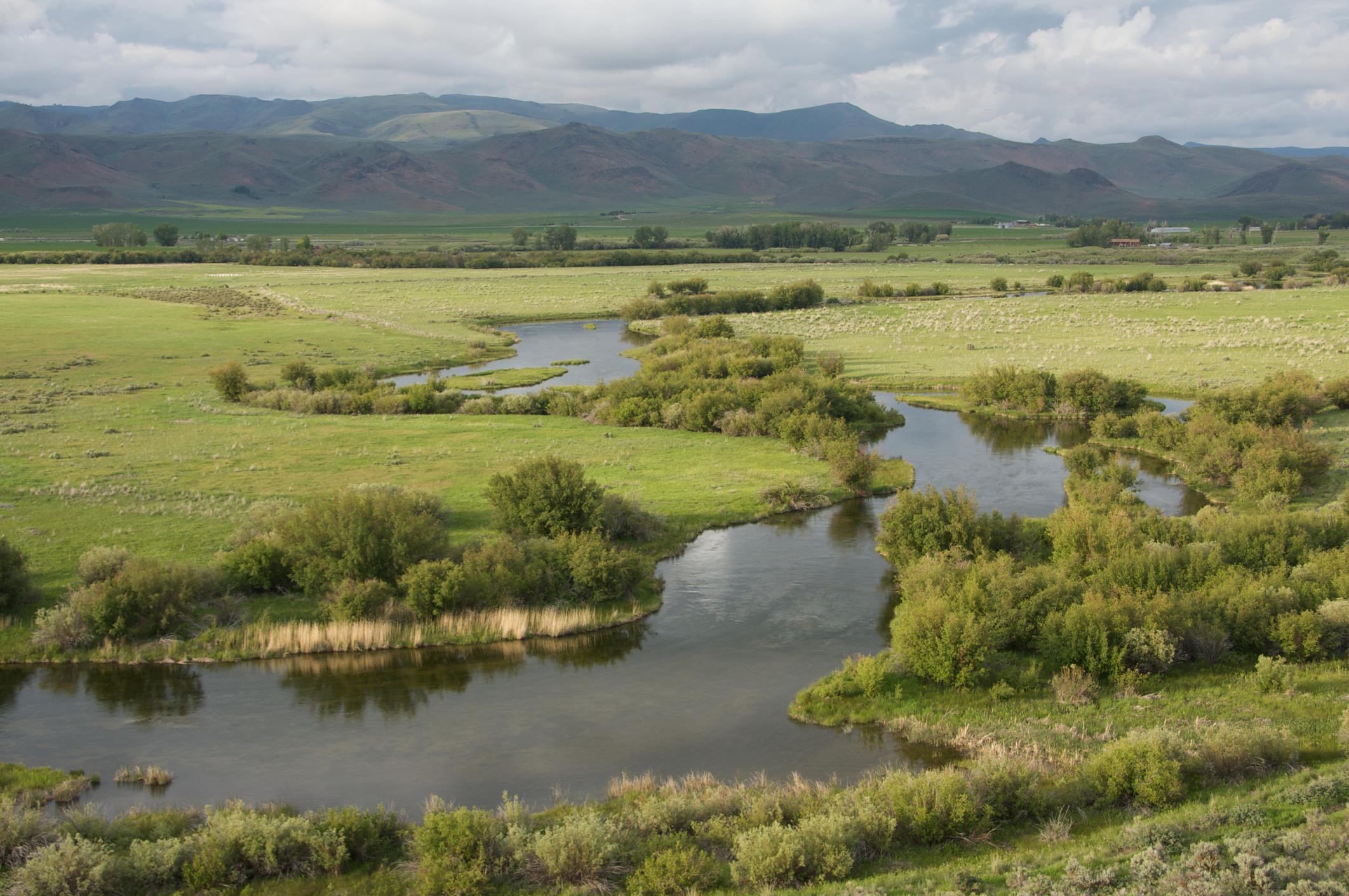 Water level and optimism rise at famed idaho for Silver creek idaho fishing