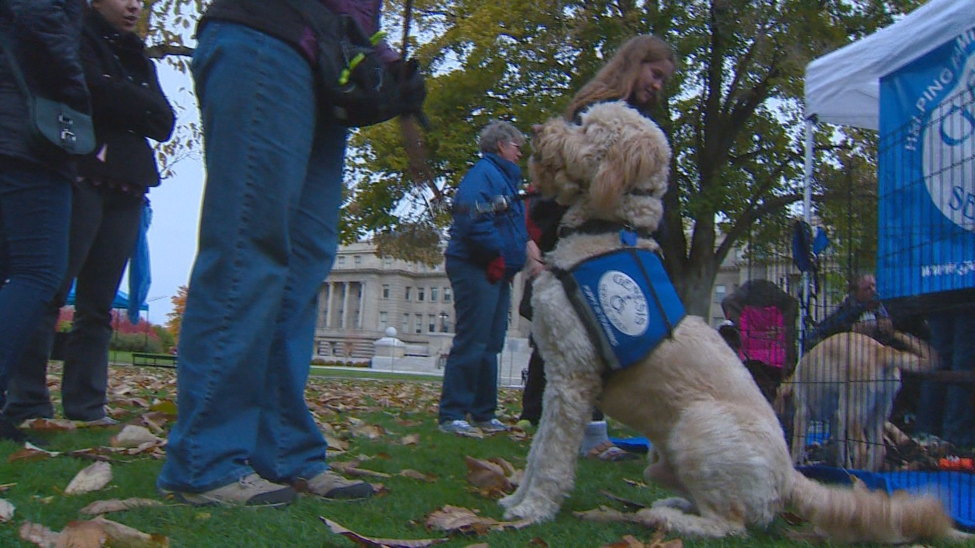 Service dogs honored at Boise event